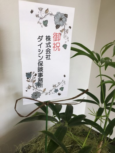 2017510184636.JPG
